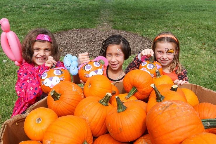 hhhc pumpkins